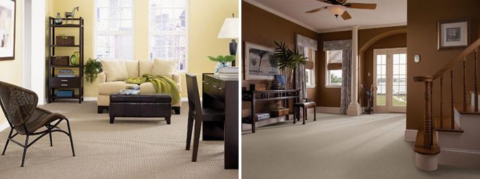 Mohawk & Shaw Carpets